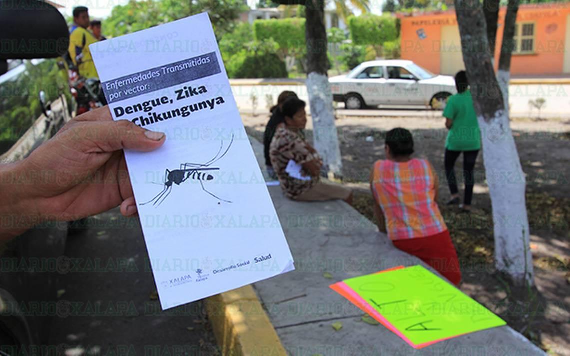 Veracruz, segundo lugar nacional con más fallecimientos por dengue - Diario de Xalapa
