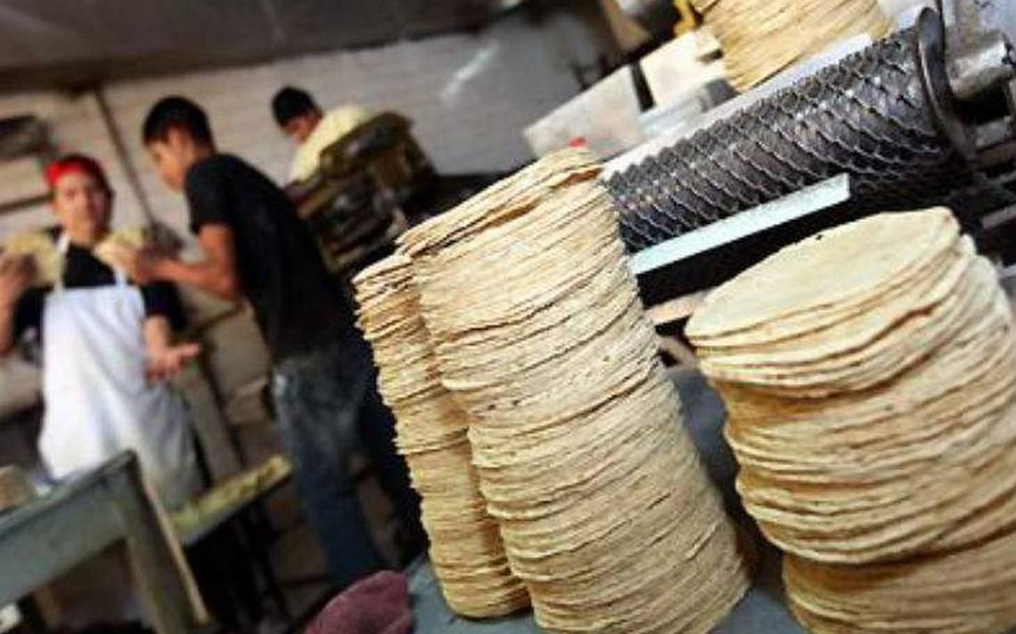 Atención! Sube el precio de la masa y la tortilla - Diario de Xalapa |  Noticias Locales, Policiacas, sobre México, Veracruz, y el Mundo
