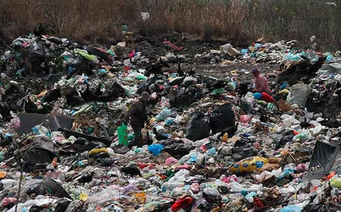 Impuestos ambientales no se utilizarían: Rementería Molina - Diario de Xalapa